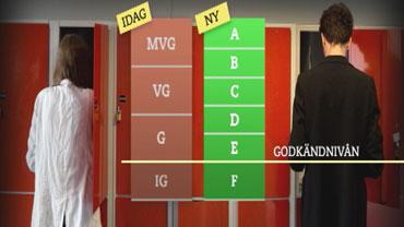 Bara fem svenskar far hogsta betyg 2